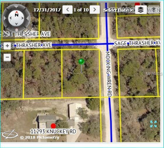 11324 Sage Thrasher Avenue, Weeki Wachee, FL 34614 (MLS #W7802333) :: FL 360 Realty