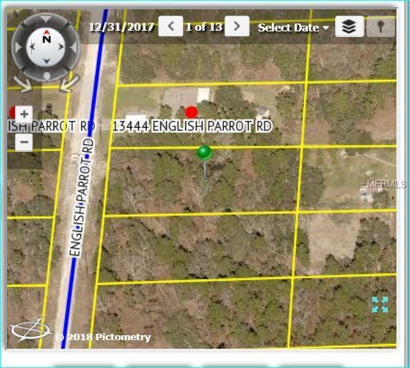 13434 English Parrot Road, Weeki Wachee, FL 34614 (MLS #W7802339) :: The Lockhart Team