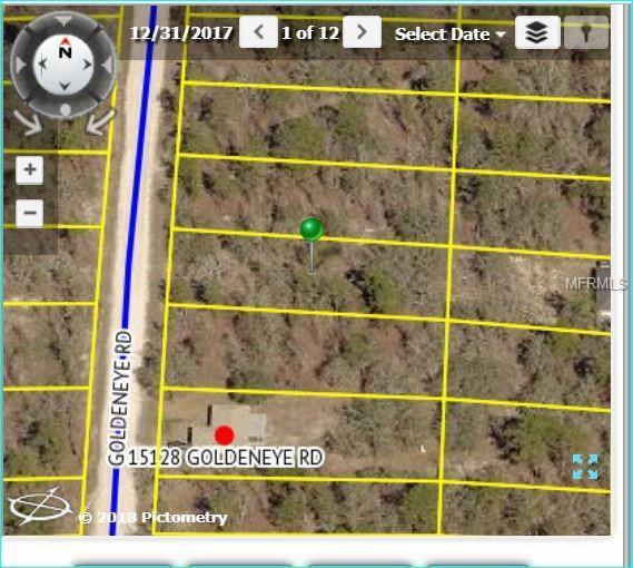 15148 Goldeneye Road, Weeki Wachee, FL 34614 (MLS #W7802366) :: The Lockhart Team