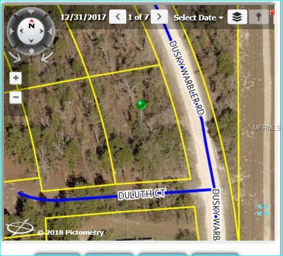 Dusky Warbler Road, Weeki Wachee, FL 34614 (MLS #W7802401) :: The Lockhart Team