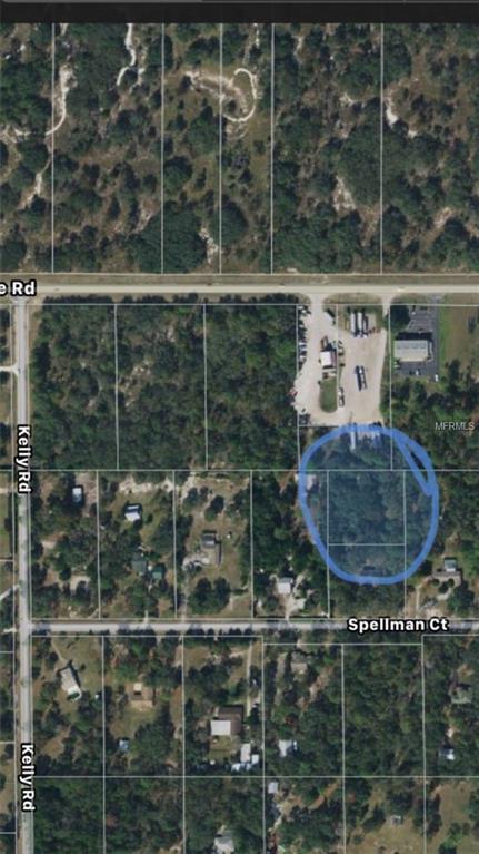 Spellman Court, Spring Hill, FL 34610 (MLS #W7802825) :: Delgado Home Team at Keller Williams