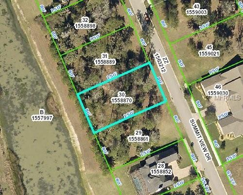 00 Summit View Drive, Brooksville, FL 34601 (MLS #W7803113) :: The Lockhart Team