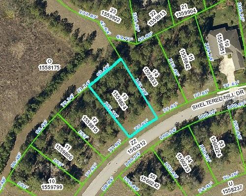 000 Sheltered Hill Drive, Brooksville, FL 34601 (MLS #W7803115) :: The Lockhart Team