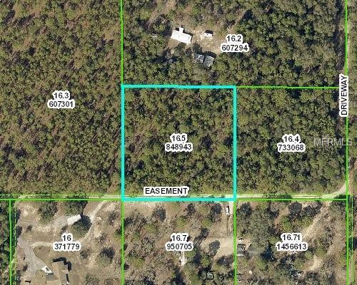 00 Advent Street, Brooksville, FL 34602 (MLS #W7803233) :: Bustamante Real Estate