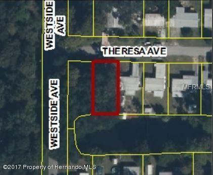 Theresa Avenue, Weeki Wachee, FL 34607 (MLS #W7803274) :: White Sands Realty Group