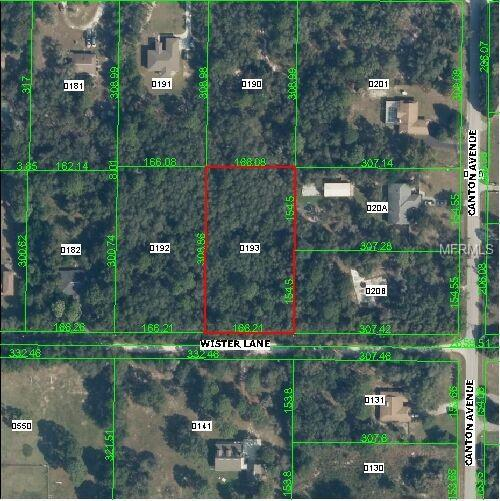 Wister Wister Lane, Hudson, FL 34669 (MLS #W7803521) :: G World Properties