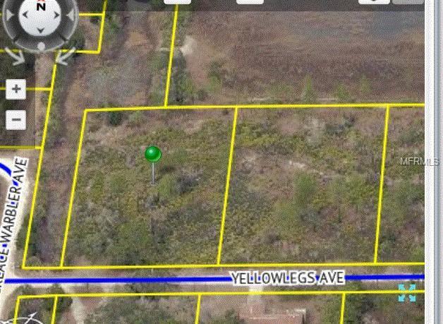 Yellowlegs Avenue, Weeki Wachee, FL 34614 (MLS #W7804031) :: Godwin Realty Group