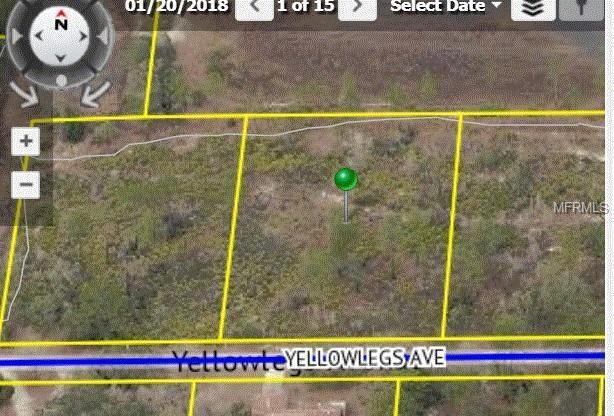 Yellowlegs Avenue, Weeki Wachee, FL 34614 (MLS #W7804032) :: Godwin Realty Group