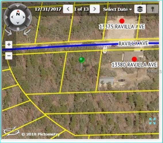 13366 Ravilla Avenue, Weeki Wachee, FL 34614 (MLS #W7804158) :: Griffin Group