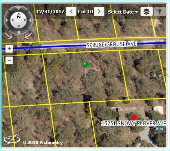 13210 Spruce Grouse Avenue, Weeki Wachee, FL 34614 (MLS #W7804200) :: Griffin Group