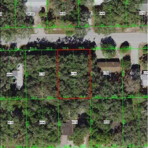 Lamont, New Port Richey, FL 34654 (MLS #W7804807) :: Griffin Group