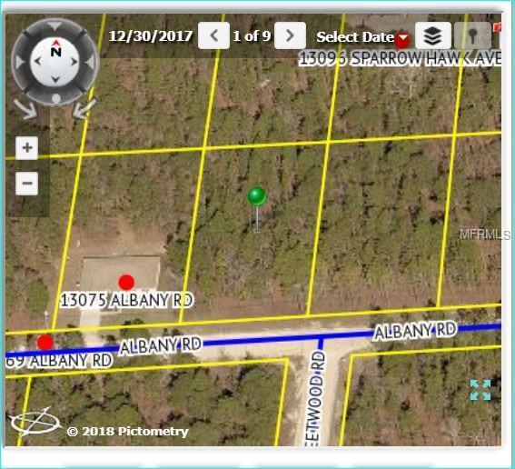 13085 Albany Road, Weeki Wachee, FL 34614 (MLS #W7804810) :: KELLER WILLIAMS CLASSIC VI
