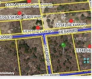 Hexam Road, Weeki Wachee, FL 34613 (MLS #W7805596) :: Cartwright Realty