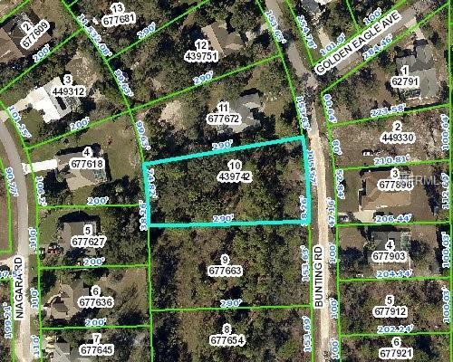 9167 Bunting Road, Weeki Wachee, FL 34613 (MLS #W7805616) :: The Lockhart Team