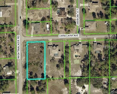 10238 Caracara Avenue, Weeki Wachee, FL 34613 (MLS #W7805645) :: The Lockhart Team