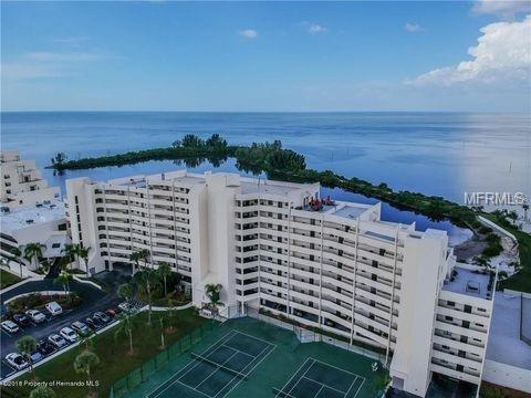 5915 Sea Ranch Drive #505, Hudson, FL 34667 (MLS #W7805848) :: Team Bohannon Keller Williams, Tampa Properties