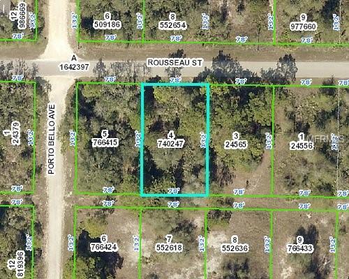 9442 Rousseau Street, Webster, FL 33597 (MLS #W7806351) :: Griffin Group