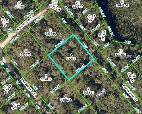 0 Karagan Court, Webster, FL 33597 (MLS #W7806353) :: Mark and Joni Coulter | Better Homes and Gardens