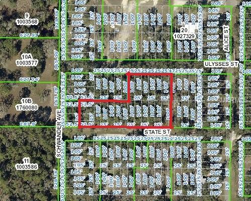 Address Not Published, Brooksville, FL 34604 (MLS #W7806377) :: The Duncan Duo Team