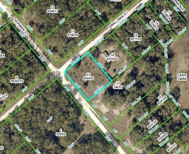 Smallman Street, Webster, FL 33597 (MLS #W7806414) :: Mark and Joni Coulter | Better Homes and Gardens