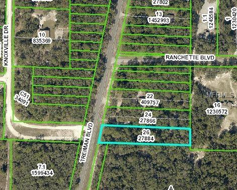 Treiman Boulevard, Webster, FL 33597 (MLS #W7806417) :: The Duncan Duo Team