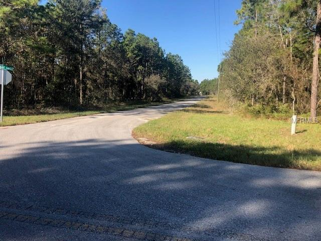 Jumper Loop (Divine Lot 1), Brooksville, FL 34609 (MLS #W7806547) :: Team Touchstone