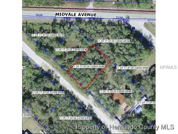 Fern Street, New Port Richey, FL 34654 (MLS #W7806592) :: The Duncan Duo Team