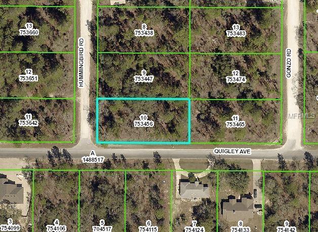 14472 Hummingbird Road, Weeki Wachee, FL 34614 (MLS #W7806594) :: Delgado Home Team at Keller Williams