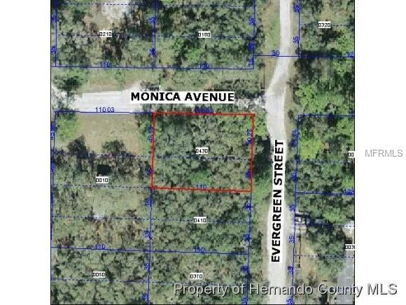 13204 Monica Avenue, New Port Richey, FL 34654 (MLS #W7806613) :: Baird Realty Group