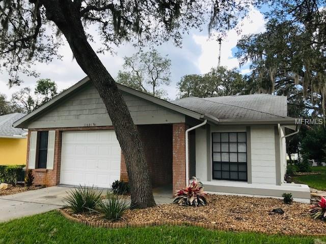 11601 Pear Tree Drive, New Port Richey, FL 34654 (MLS #W7806808) :: Remax Alliance