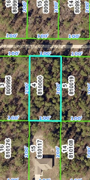 0000 Schick Avenue, Brooksville, FL 34614 (MLS #W7806923) :: Team Touchstone