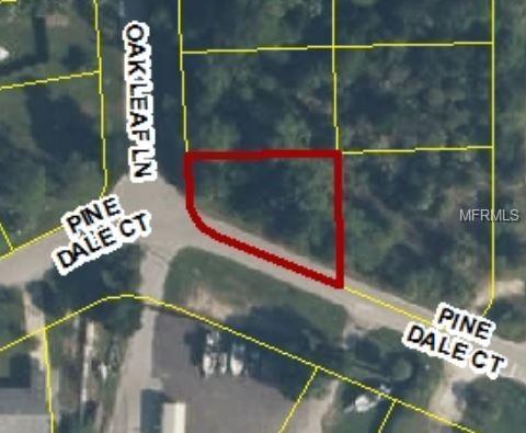 5026 Oak Leaf Lane, Hernando Beach, FL 34607 (MLS #W7806971) :: Burwell Real Estate