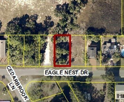 3605 Eagle Nest Drive, Hernando Beach, FL 34607 (MLS #W7806974) :: Cartwright Realty
