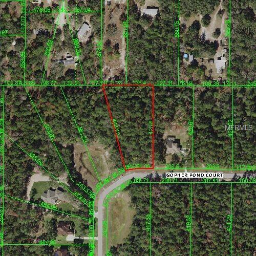 13619 Gopher Pond Court Lot 4, Hudson, FL 34669 (MLS #W7807125) :: The Duncan Duo Team