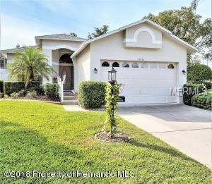 2413 Fairskies Drive, Spring Hill, FL 34606 (MLS #W7807322) :: The Duncan Duo Team