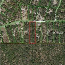 Peace, Hudson, FL 34669 (MLS #W7807653) :: Mark and Joni Coulter | Better Homes and Gardens