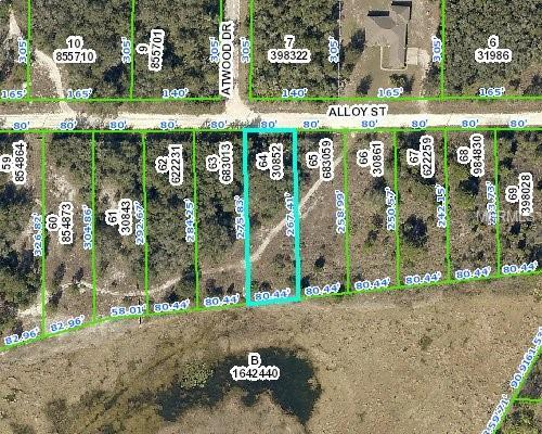 Address Not Published, Webster, FL 33597 (MLS #W7807683) :: NewHomePrograms.com LLC