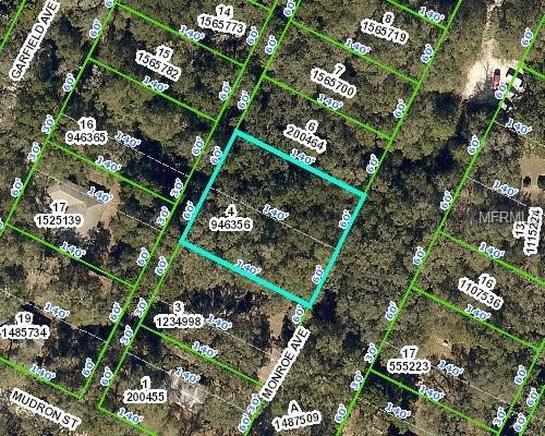 Address Not Published, Brooksville, FL 34604 (MLS #W7807990) :: The Duncan Duo Team