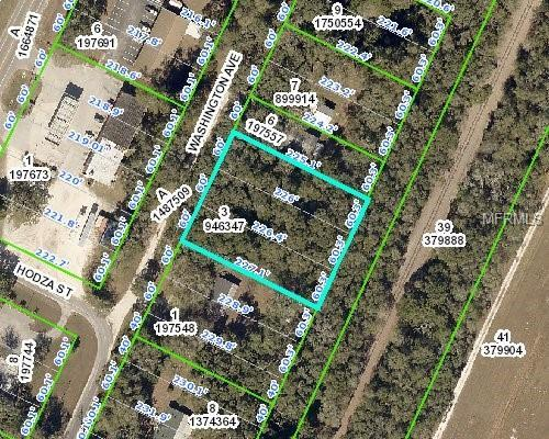 Address Not Published, Masaryktown, FL 34604 (MLS #W7808018) :: The Duncan Duo Team