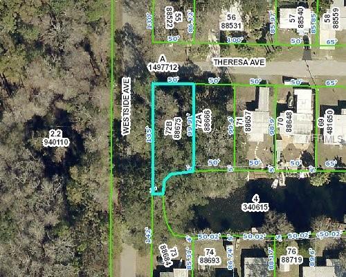 0 Theresa Avenue, Weeki Wachee, FL 34607 (MLS #W7808034) :: The Duncan Duo Team