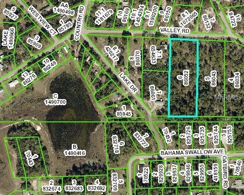 0 Valley Road, Weeki Wachee, FL 34613 (MLS #W7808197) :: Delgado Home Team at Keller Williams