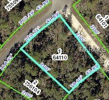 12089 Jaybird Road, Brooksville, FL 34613 (MLS #W7808229) :: Homepride Realty Services