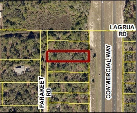 19033 Commercial Way, Weeki Wachee, FL 34614 (MLS #W7808323) :: Homepride Realty Services