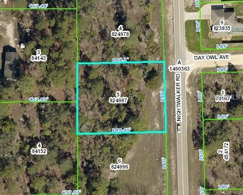 8079 Nightwalker Road, Weeki Wachee, FL 34613 (MLS #W7809467) :: Griffin Group