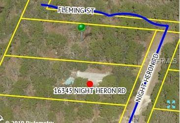 10360 Fleming Street, Weeki Wachee, FL 34614 (MLS #W7809665) :: NewHomePrograms.com LLC