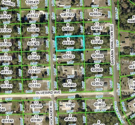 7042 Oregon Chickadee Road, Weeki Wachee, FL 34613 (MLS #W7809666) :: NewHomePrograms.com LLC