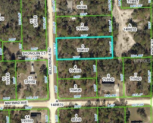 10480 Millerdale Road, Weeki Wachee, FL 34613 (MLS #W7809734) :: Griffin Group
