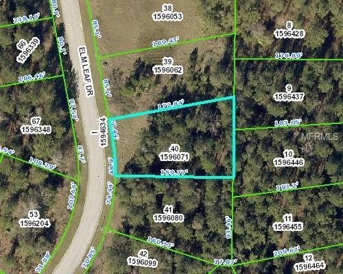 4986 Elm Leaf Drive, Brooksville, FL 34601 (MLS #W7809837) :: Premium Properties Real Estate Services