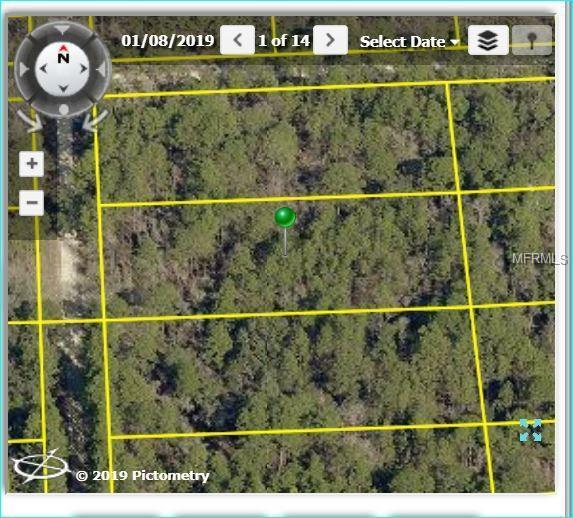 18044 Nighthawk Road, Weeki Wachee, FL 34614 (MLS #W7809841) :: RE/MAX Realtec Group