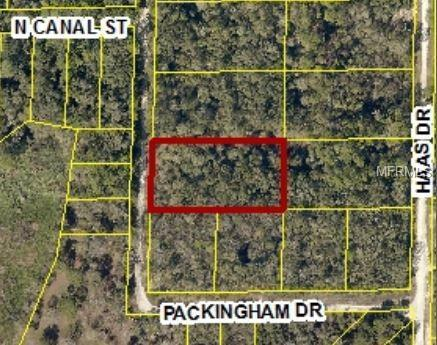 7388 Packingham Drive, Webster, FL 33597 (MLS #W7809849) :: Griffin Group